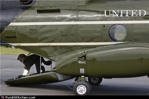 barack obama bo dogs Hall of Fame political pictures - 5080226816