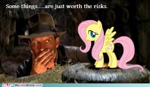 fluttershhy Indiana Jones risk - 5080260608