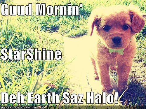 Guud Mornin' StarShine Deh Earth Saz Halo!