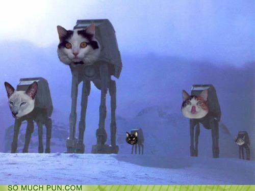 at at at cat Cats Hoth literalism shoop similar sounding star wars suffix - 5080868608
