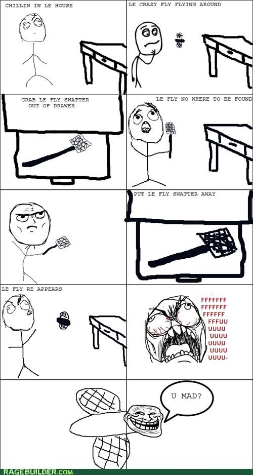 annoying drawer fly fly swatter Rage Comics