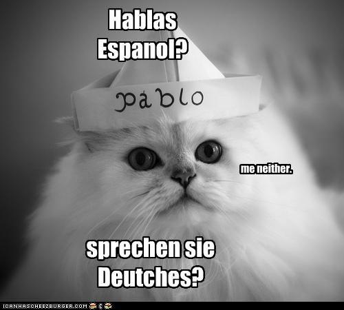 Hablas Espanol? me neither. sprechen sie Deutches?