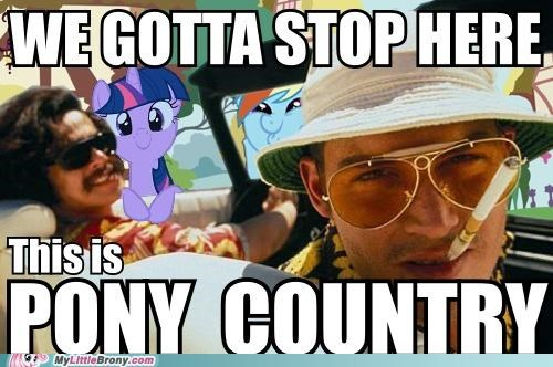 For the Dudes IRL Movie pony country taking over - 5082248960