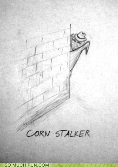corn cornstalk literalism portmanteau stalk stalker - 5082277888