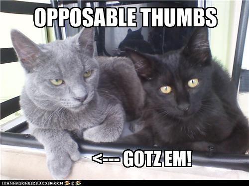 OPPOSABLE THUMBS <--- GOTZ EM!