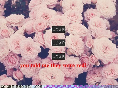 flowers hipsterlulz liar red - 5083251968
