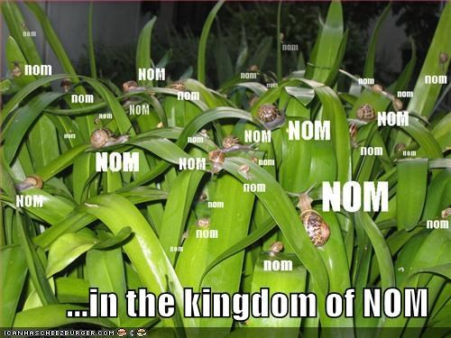grass,nom,snails