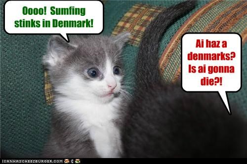 Oooo! Sumfing stinks in Denmark! Ai haz a denmarks? Is ai gonna die?!