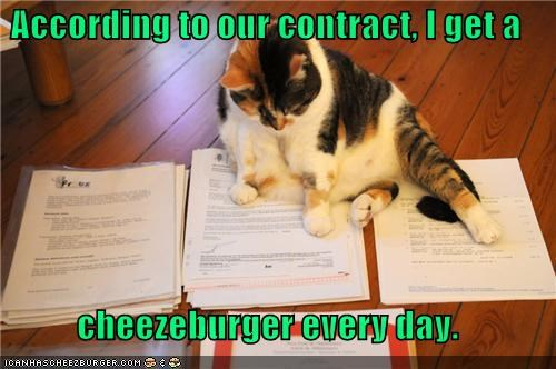 Cheezburger Image 5085650176