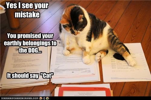 """Yes I see your mistake You promised your earthly belongings to the DOG... It should say """"Cat"""""""