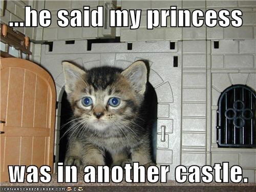 ...he said my princess was in another castle.