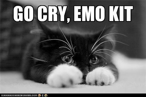 animals black and white Cats cry emo go cry emo kid I Can Has Cheezburger puns Sad - 5087298816