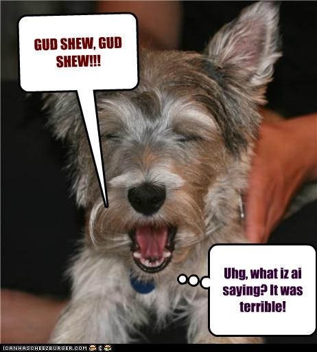 Cleverness Here Cleverness Here GUD SHEW, GUD SHEW!!! Uhg, what iz ai saying? It was terrible!