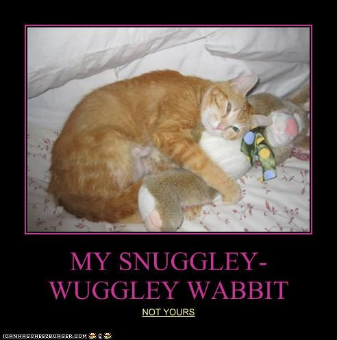 MY SNUGGLEY-WUGGLEY WABBIT NOT YOURS