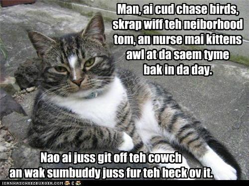 Man, ai cud chase birds, skrap wiff teh neiborhood tom, an nurse mai kittens awl at da saem tyme bak in da day. Nao ai juss git off teh cowch an wak sumbuddy juss fur teh heck ov it.