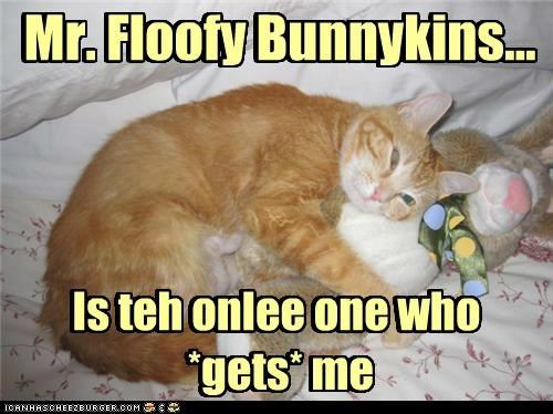 Mr. Floofy Bunnykins... Mr. Floofy Bunnykins... Is teh onlee one who *gets* me Is teh onlee one who *gets* me