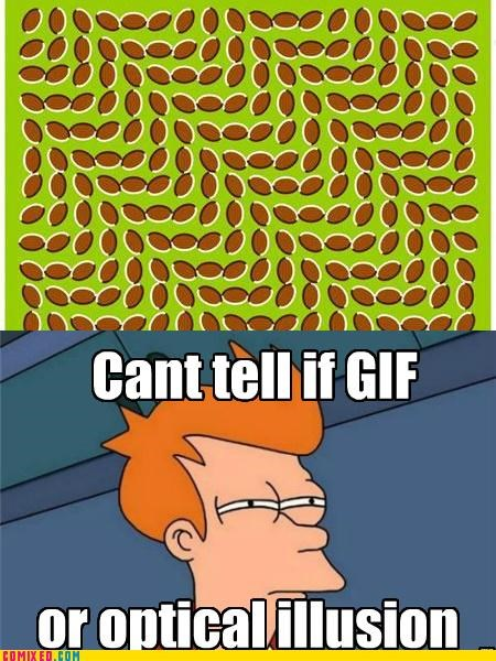 fry meme,gifs,optical illusion,the internets