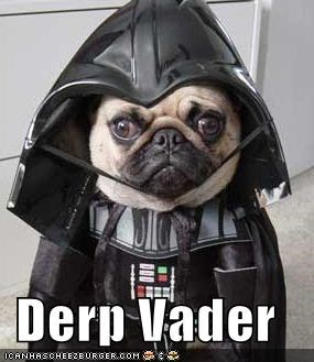 costume darth vader derp vader pug star wars - 5090738688