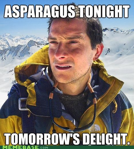 asparagus,bear grylls,pee,tomorrows-delight,vegetables