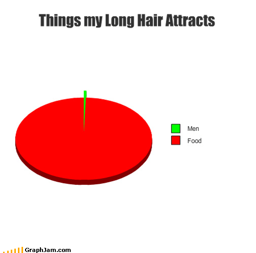 attraction,food,hair,long hair,men,Pie Chart
