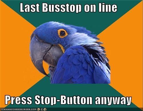 bus,line,Paranoid Parrot,public,stop,transportation