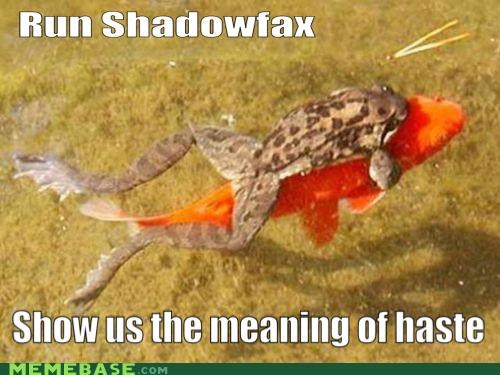 animemes,fish,frog,haste,lake,Memes,shadowfax