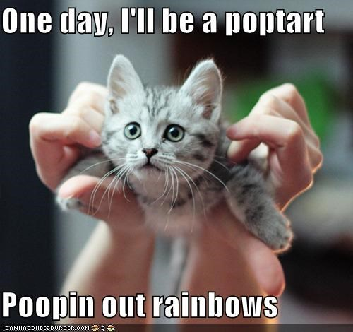 best of the week caption captioned cat dreaming dreams flying Hall of Fame kitten Nyan Cat pooping pop tart rainbows - 5093787392