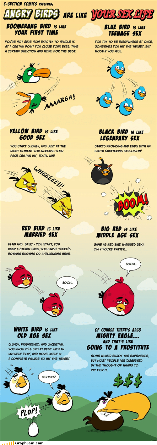akward angry birds explosion infographic sexytimes - 5093842944