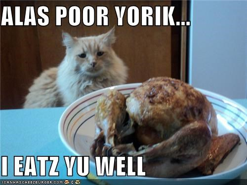 alas poor yorik,animals,Cats,food,hamlet,I Can Has Cheezburger,shakespeare,Turkey
