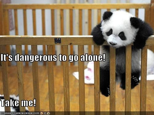 alone caption captioned climbing crib dangerous go its dangerous to go alone me panda panda bear take - 5093999360