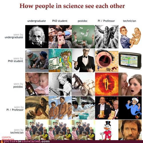 chuck norris,How People View Me,science