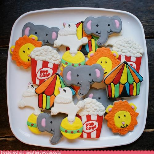 circus,cookies,dogs,elephant,epicute,liion,Popcorn,tent