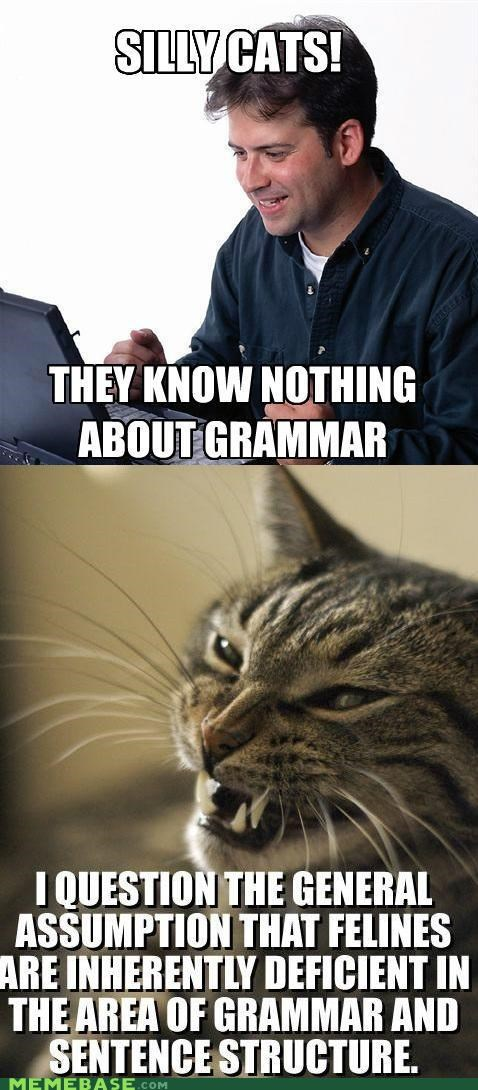 animemes grammar lolcats Net Noob never forget Reframe - 5094888192