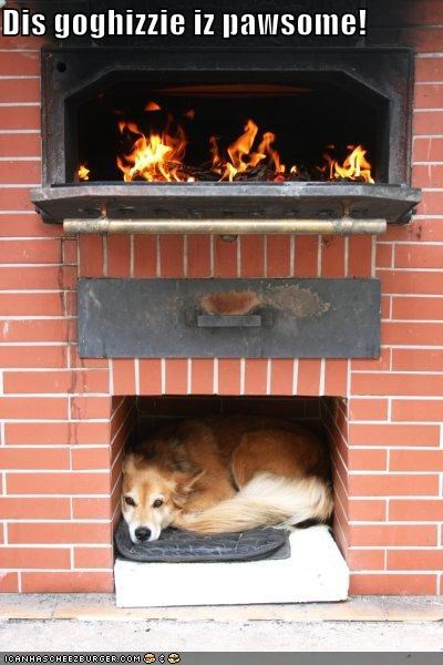 dog house doghouse fireplace home house nook secret place special place whatbreed