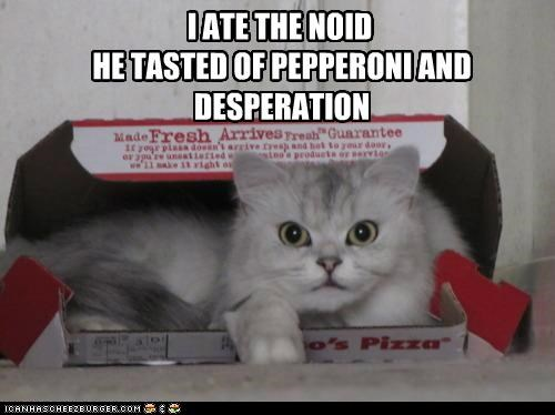 ate box caption captioned cat nerd pepperoni pizza - 5095993344