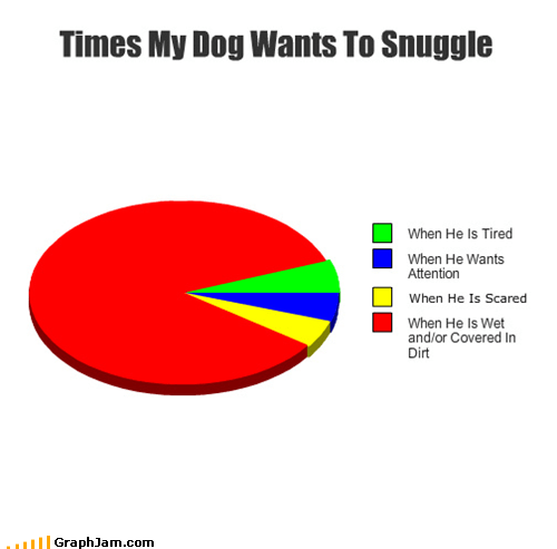 cute dirty dogs Pie Chart snuggle wet