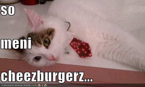 Cheezburger Image 5096704000