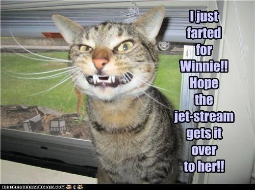 I just farted for Winnie!! Hope the jet-stream gets it over to her!!