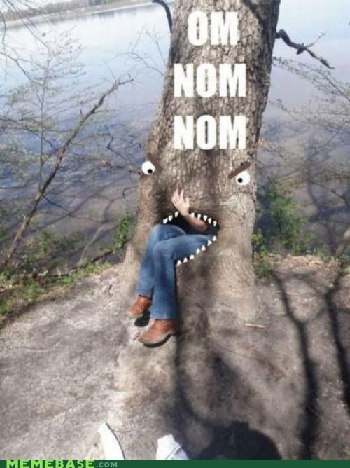 delicious,face,kids,Memes,om nom nom,tree