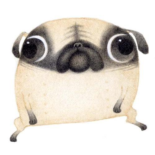 caricature,drawing,pug,whats-on-your-mind