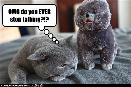 animals annoyed annoying Cats happycat I Can Has Cheezburger shut up stuffed animals - 5098729216