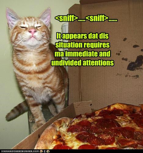<sniff>.....<sniff>...... It appears dat dis situation requires ma immediate and undivided attentions