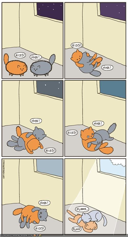 comic,comics,peace,purr,sun,sunbeam,warm,windows,wrestling