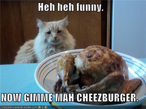 Cheezburger Image 5099553792