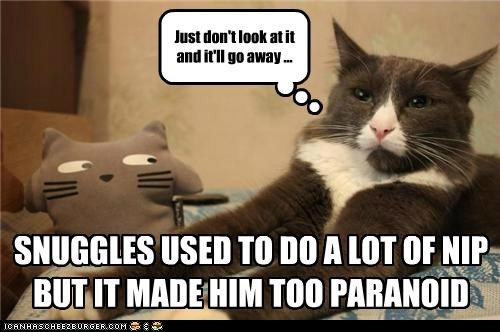 SNUGGLES USED TO DO A LOT OF NIP BUT IT MADE HIM TOO PARANOID Just don't look at it and it'll go away ...