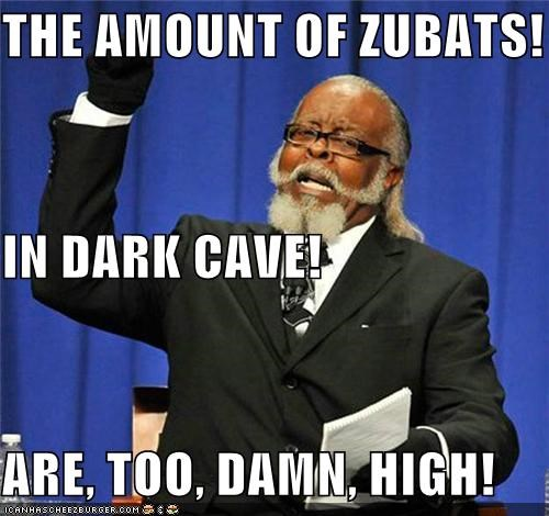 THE AMOUNT OF ZUBATS! IN DARK CAVE! ARE, TOO, DAMN, HIGH!
