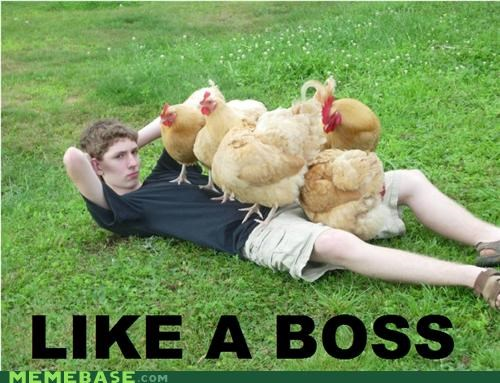 boy chicks Like a Boss magnet - 5100232704