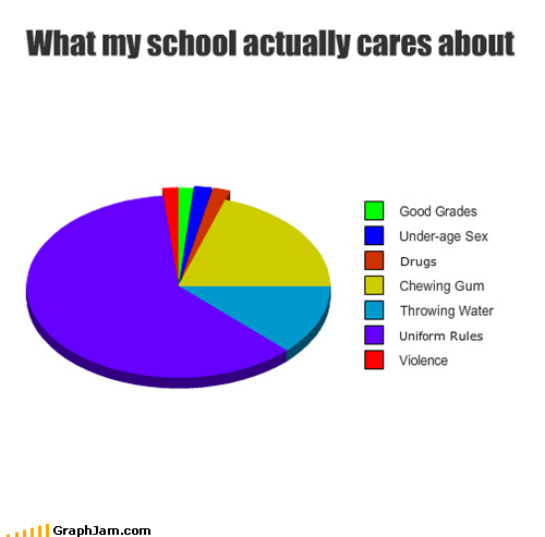 clothes,Pie Chart,rules,school,uniform