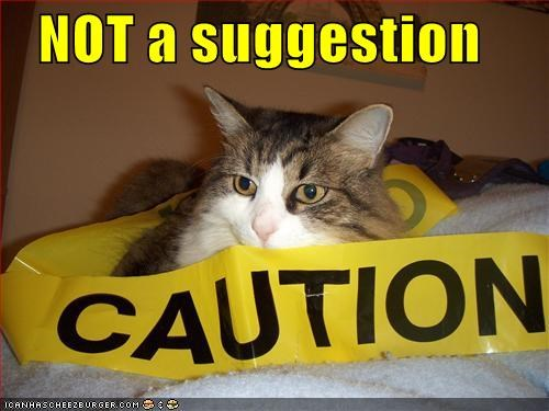 caption captioned cat caution not suggestion tape - 5101121536
