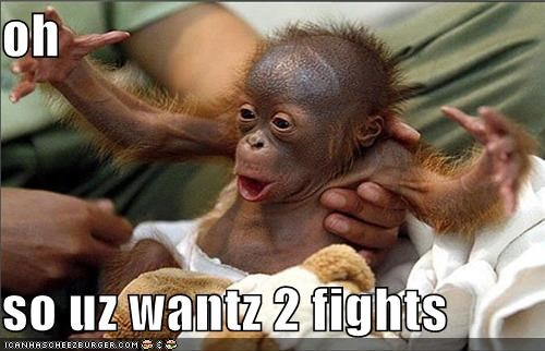animals apes Babies come at me bro cute fight I Can Has Cheezburger orangutan - 5101440256